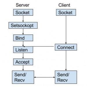 Socket Programming in C-C++