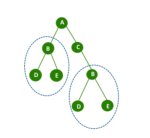 Check if a Binary Tree contains duplicate subtrees of size 2