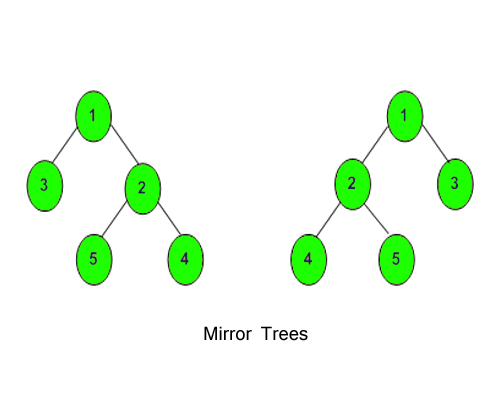MirrorTree1